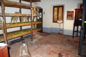 Ecomuseo & bloggiornalismo (57)